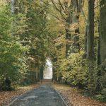De Dreef van Boechout, Holleweg